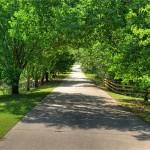24017 Old Dobbin Plantersville