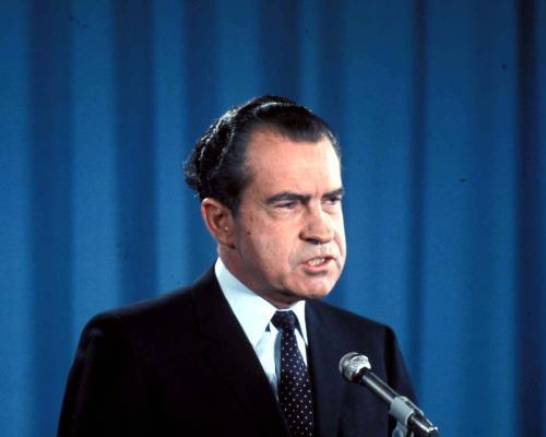 Nixon interviews