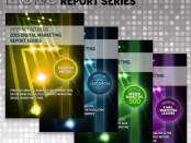 Internet Retailer Digital Marketing Report