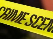 crime_scene_invest