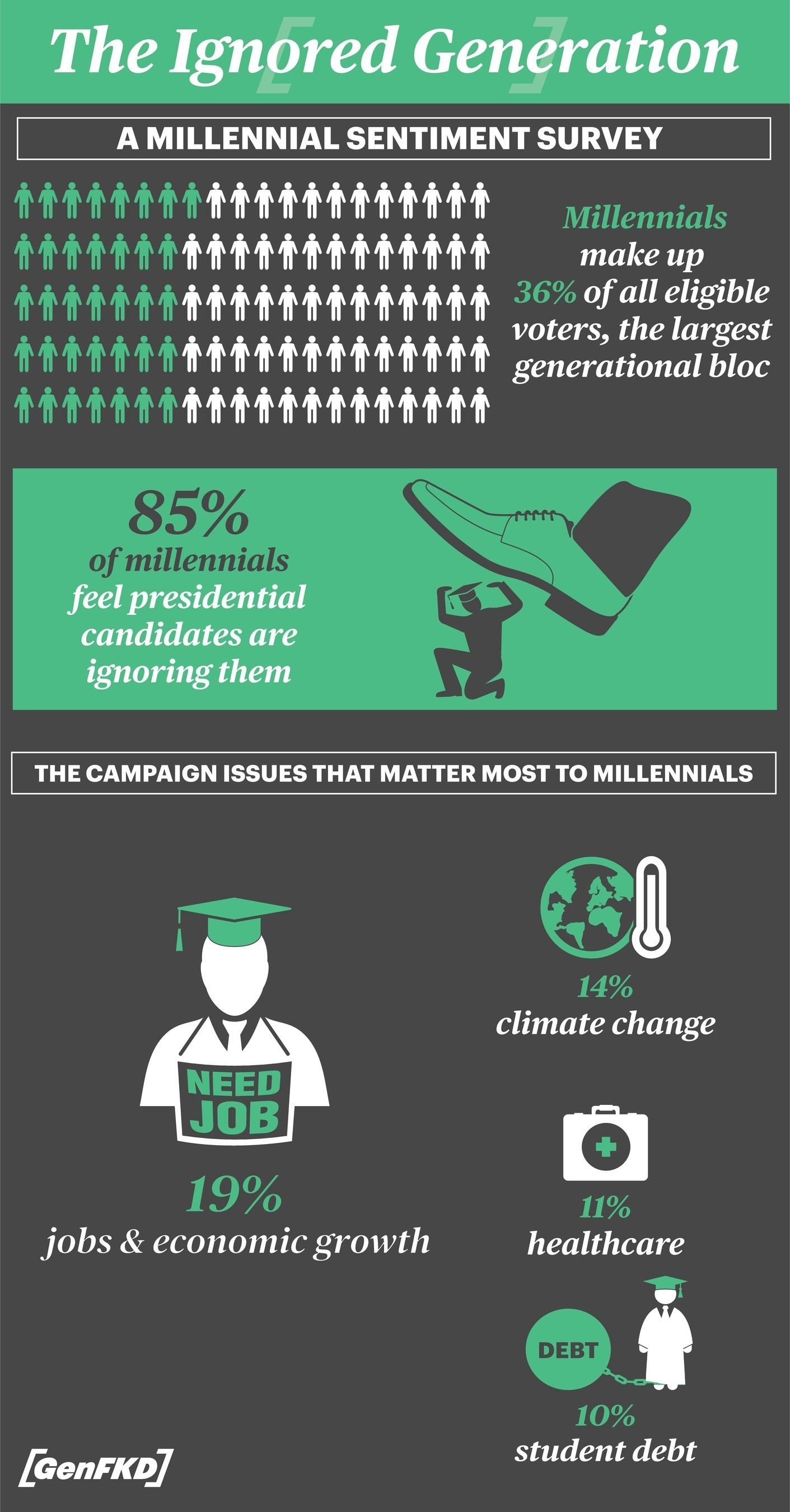 Millennial Survey Infographic