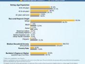 Census Bureau New Hampshire Graphic Infographic
