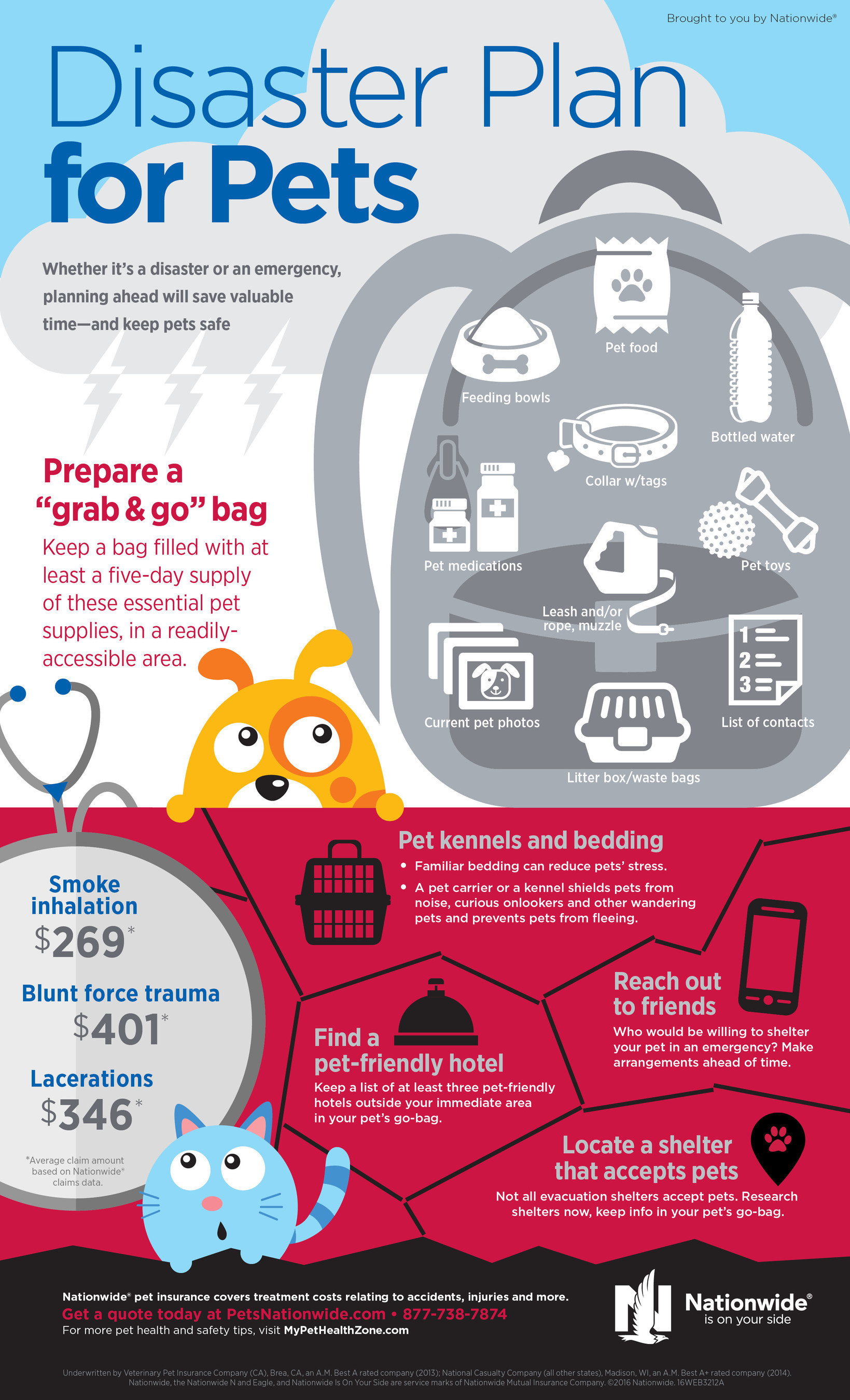Pet Disaster Prep Update Infographic
