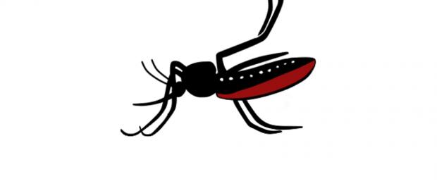bug-1350788_960_720