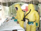 ebola-free