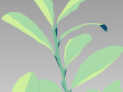 vector-leaves-941805_960_720