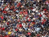 crowd-free