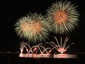 fireworks-535198_960_720