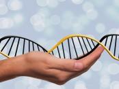 deoxyribonucleic-acid-1500076_960_720