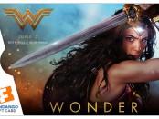 Fandango Wonder Woman Wonder