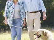 Pet-dogs-and-older-adults