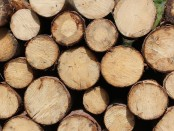 chopped-wood-1846182_960_720