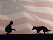 American Humane silhouette soldier dog flag