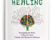 Wired for Healing BOOK COVER