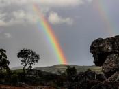 rainbow-509500__340
