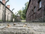POLAND HOLOCAUST FREE