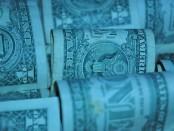 dollar-17527__340