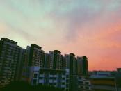 pexels-photo-881727