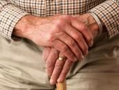 elderly free