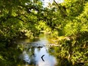 calm-river-2108172